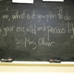 from Mary Oliver