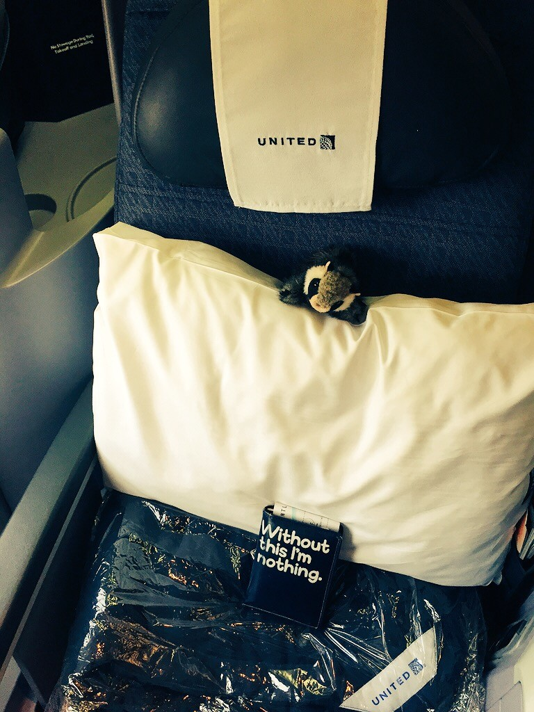 "Tiny Raccon perches on a pillow on a business class airline seat. Below sits a passport, in a case that says ""without this I'm nothing"""
